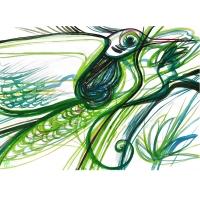 7.Bird_1